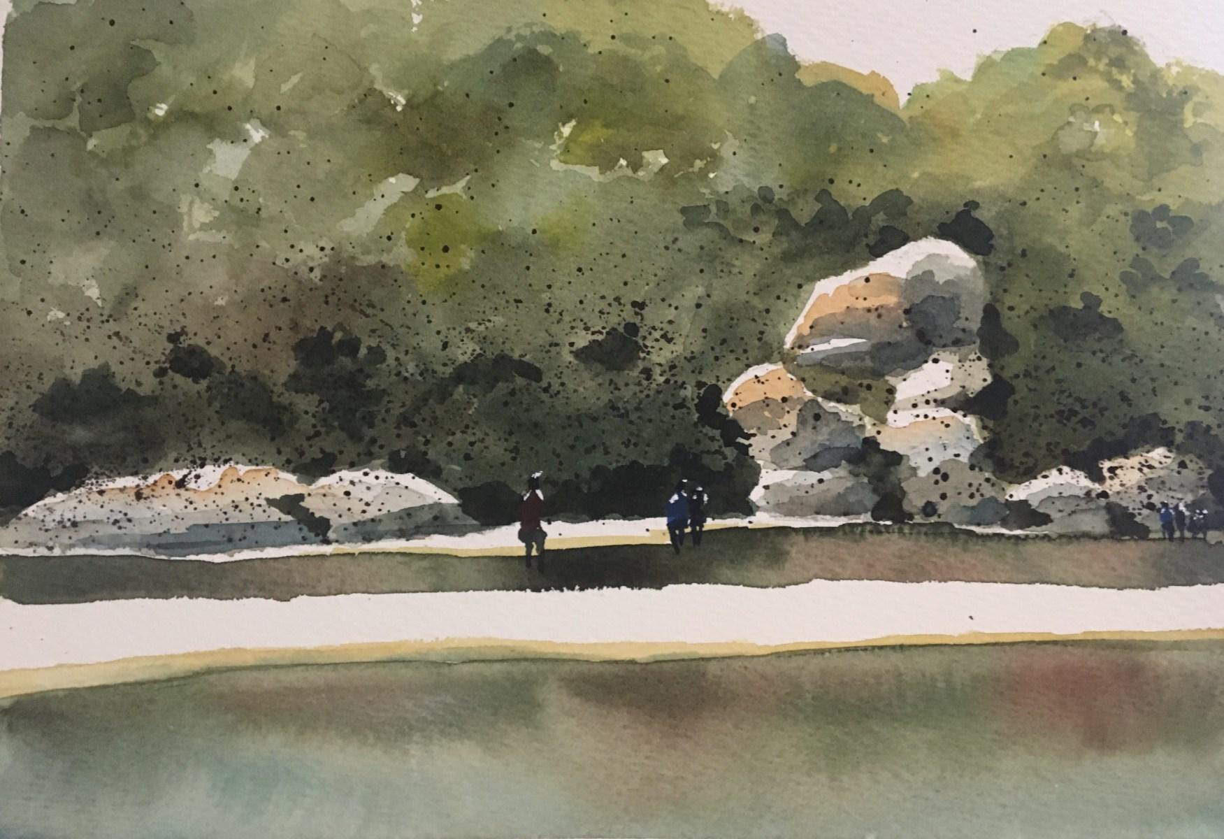 Mia Davison - Tidal River, Wilsons Promontory - Greens