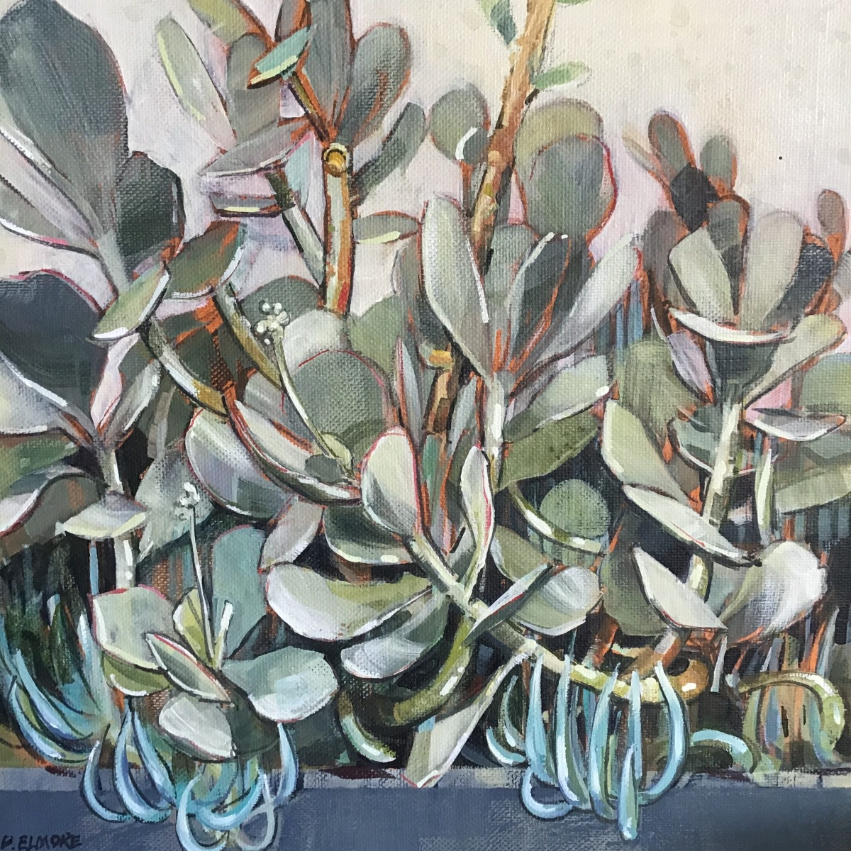 Bron Elmore - Succulent study in greys - Grey
