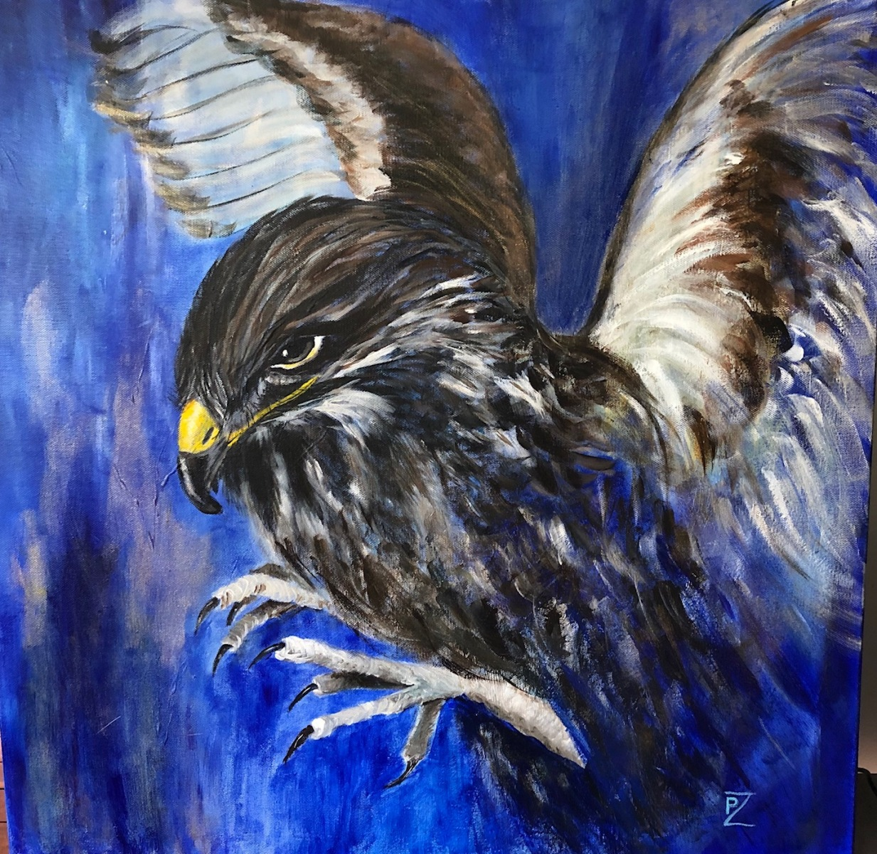 Pamela Ziedas - Eagle
