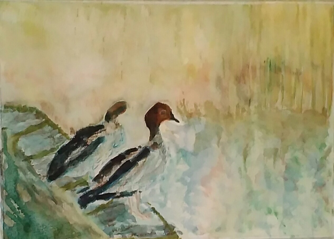 Karen Connolly - Mr and Mrs Duck