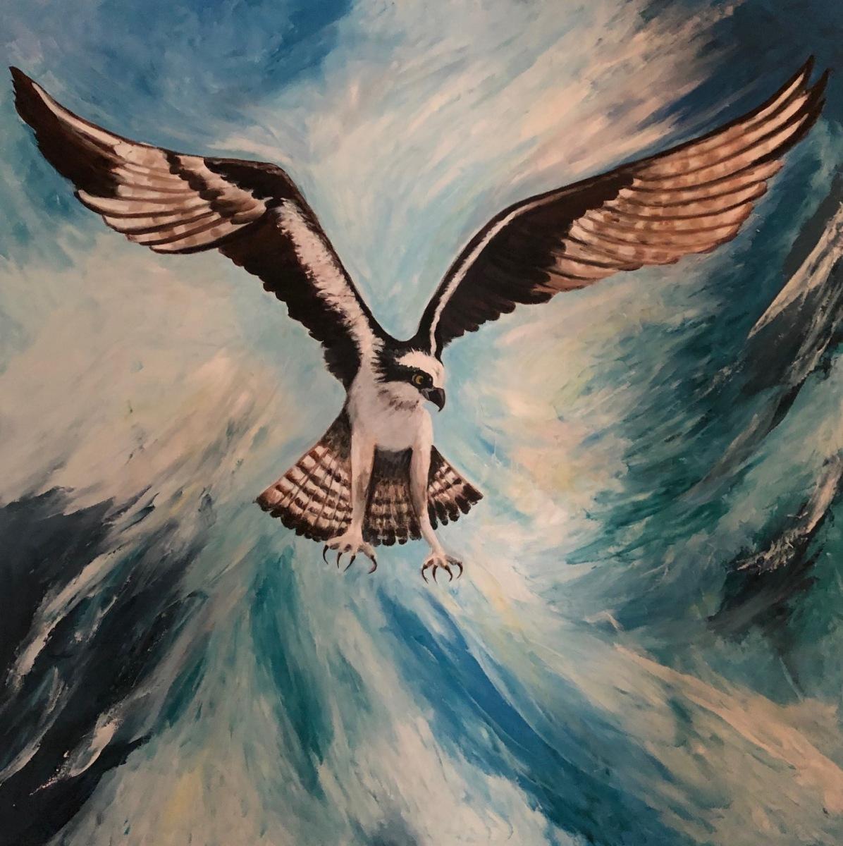 Pamela Ziedas - Osprey