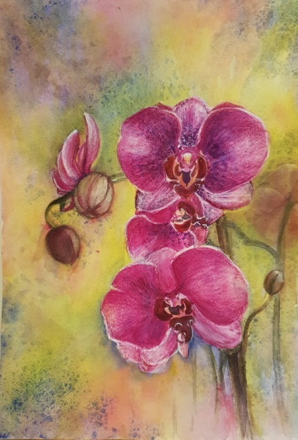 Natalie Doubrovksi - Orchids - watercolour