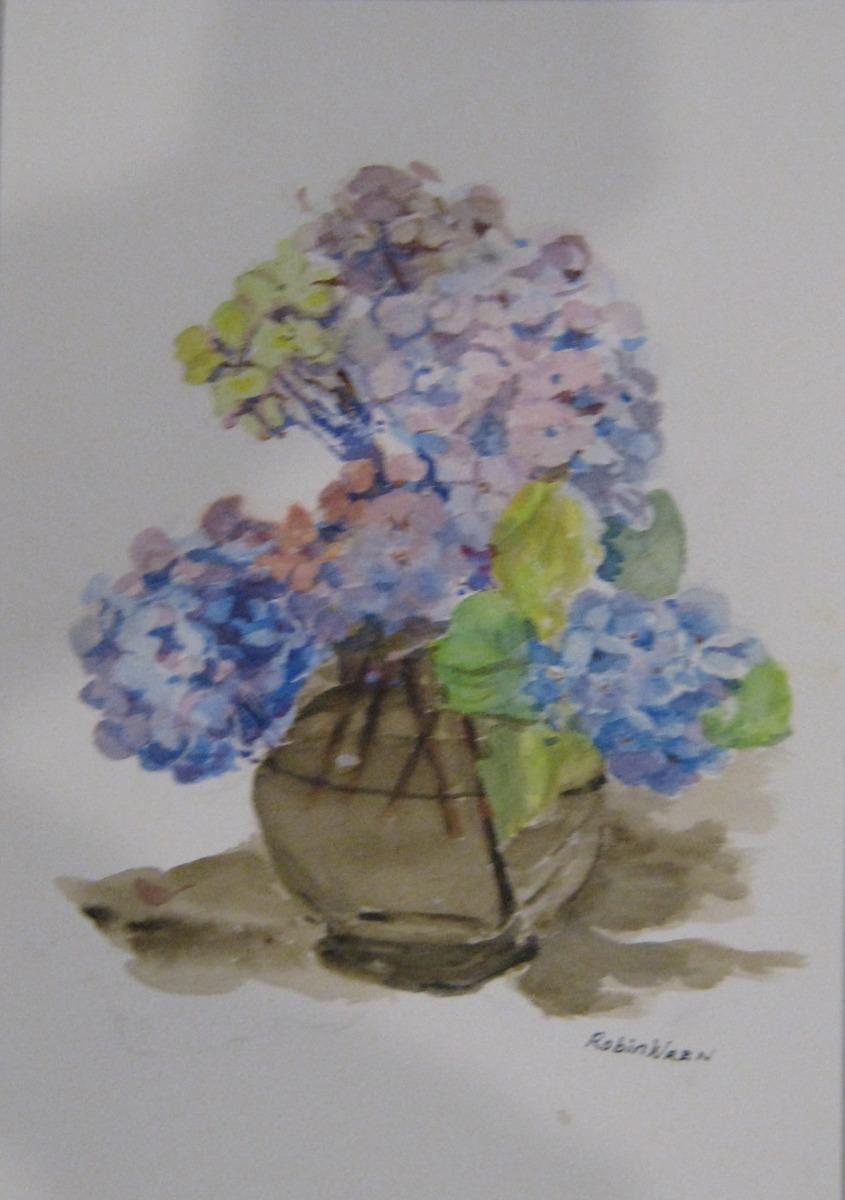 Robin Wren - Hydrangeas