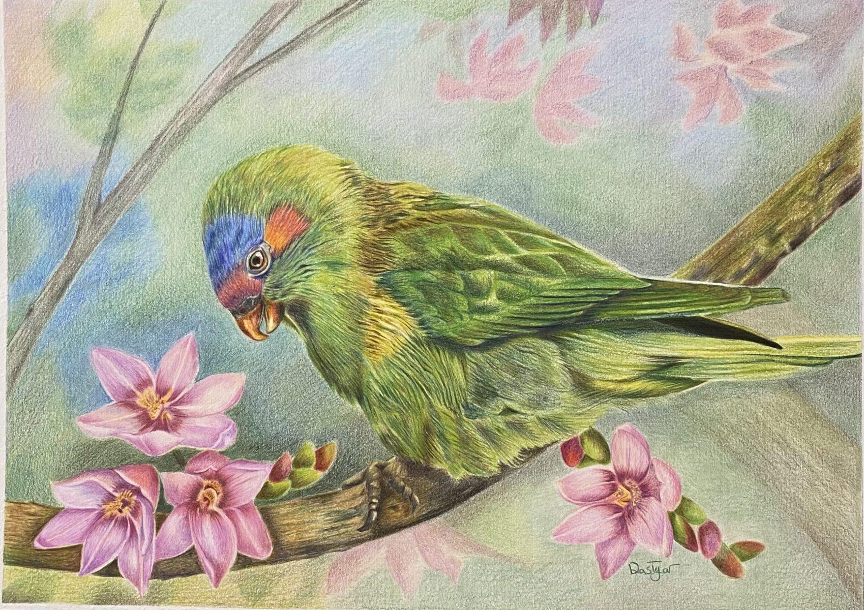 Effie Dastyar - Calm Parrot