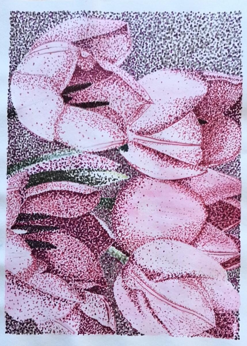 Tao Yu - Tulips