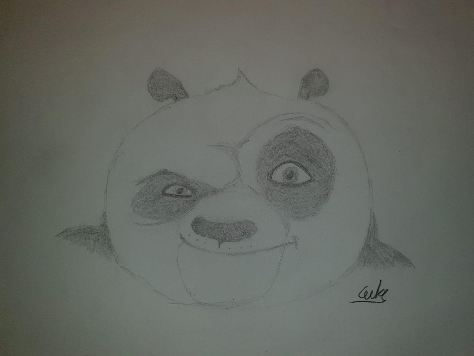 Luke - Age 11 - Kung Fu Panda