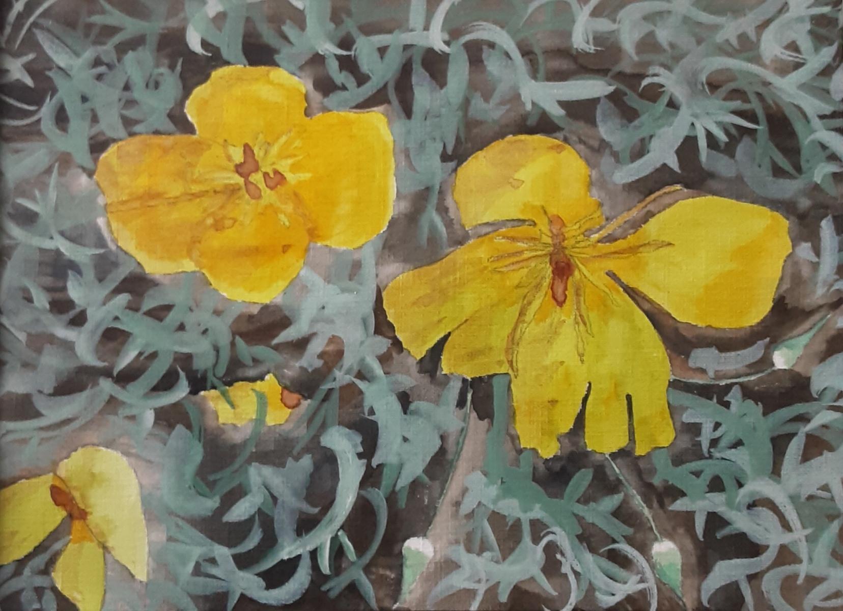 Karen Connolly - Californian Poppies