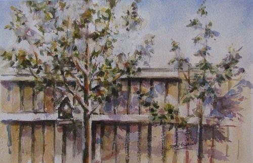 Jon Lam - My Backyard