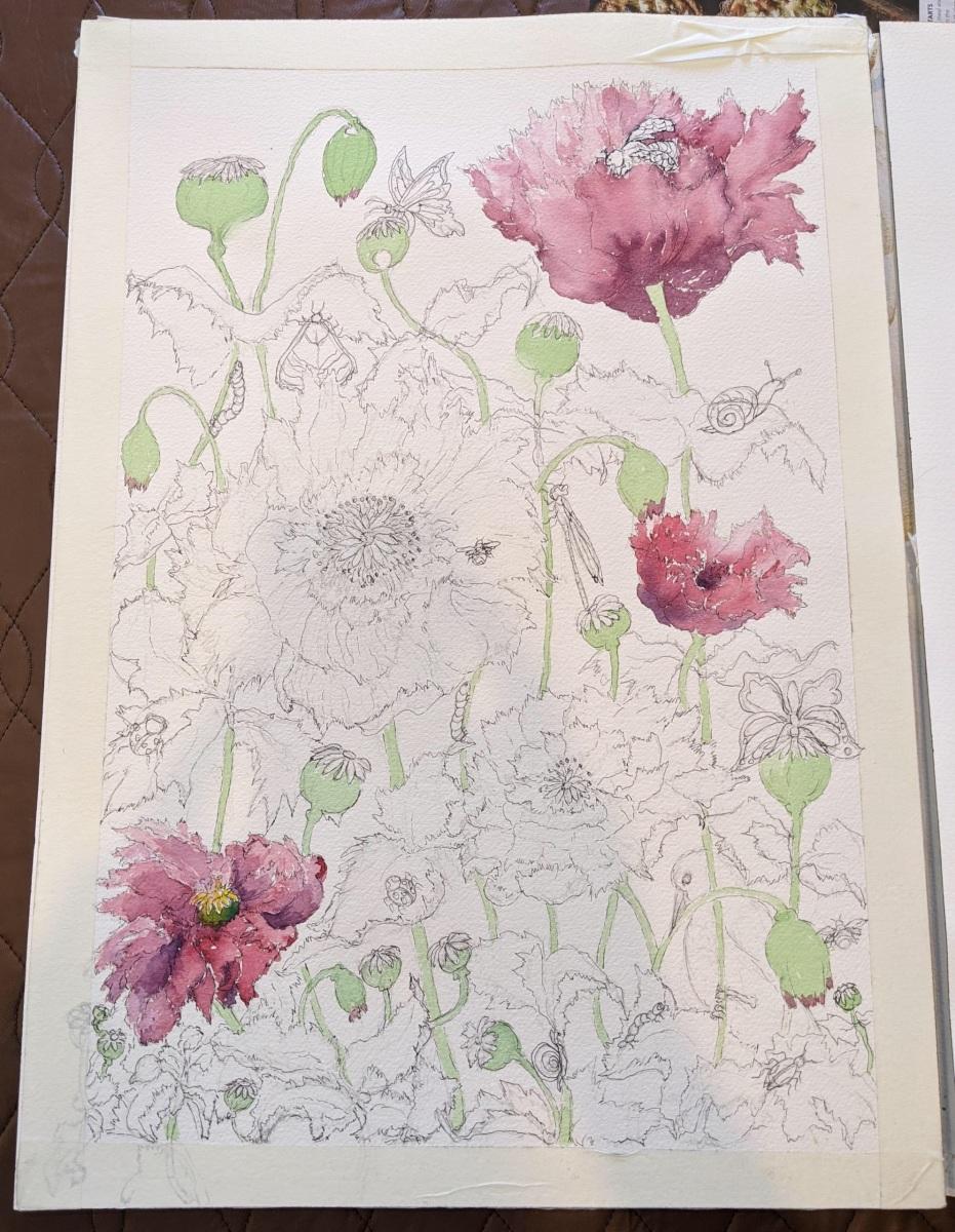 Sheryl Stuart - Opium Poppies - work in progress