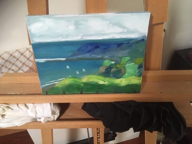 Liz Eades - Flinders Version 1 - painted from inside my car